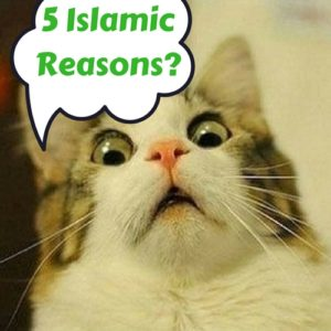 5 Islamic Reasons to get rich